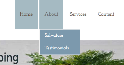 salvatore-testimonials-menu
