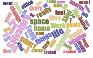 salvatore-wordcloud